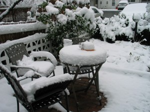 On Thursday my patio looked like this...